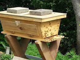 How To Build Top Bar Hive Golden Mean Hive Kiwi Beekeeping Topbar Hives