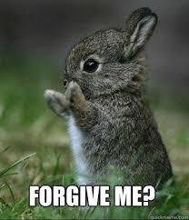 Forgive Me Meme - forgive me cute bunny quickmeme