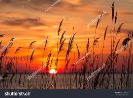 Calvert County Flag Peaceful Chesapeake Bay Sunrise Calvert County Stock Photo