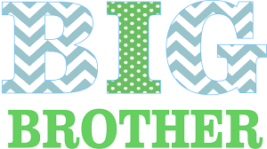 personalized printed boys tees little hoot designs