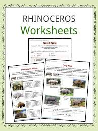 animal worksheets habitat farm animals worksheets u0026 study