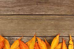 colorful autumn leaves border stock photo image 61520456