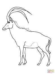 wooded savannah sable antelope coloring page free printable