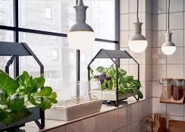 ikea garden bed hydrophonic garden grows restaurant food in house
