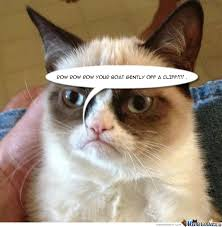 Mad Cat Memes - mad cat no by lukezammit meme center
