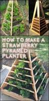 How To Make A Moss Wall by Best 20 Pallet Garden Box Ideas On Pinterest Gardening