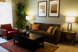 Decor For Living Room New 28 Decoration For Apartment Living Room Cheap Living Room