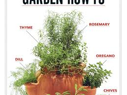 14 herb gardening in pots herb planter herb planters are ideal for