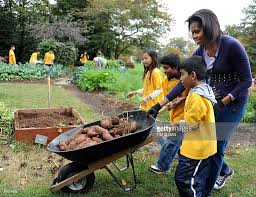 Fall Vegetables Garden by Michelle Obama And Students Help With Harvest Of White