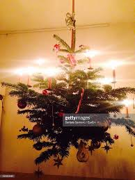 christmas tree hanging on ceiling at home stock photo getty images