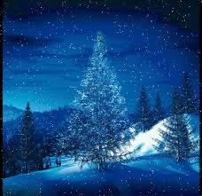 illuminated tree in snow tree snow gif and snow
