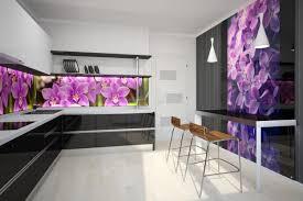cuisine en verre crédence cuisine originale 48 idées en matériaux différents
