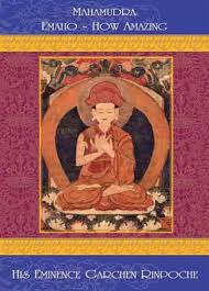 the five fold path of mahamudra the gradual path drikung