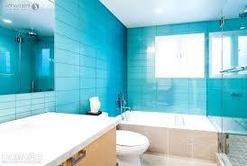 green and gray bathroom u2013 hondaherreros com