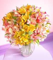 peruvian lilies keepsakes florist mixed peruvian lilies bouquet with vase