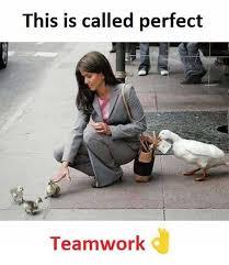 Teamwork Memes - dopl3r com memes this is called perfect teamwork