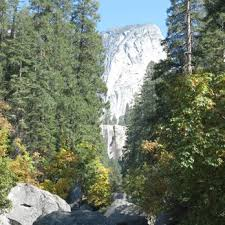 Yosemite Lodge At The Falls Front Desk Phone Number Tenaya Lodge At Yosemite 558 Photos U0026 576 Reviews Hotels