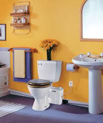 basement bathroom plumbing pump interior design