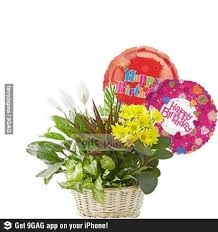 send a balloon best 25 send balloons ideas on valentines balloons
