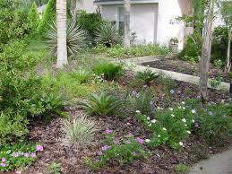 Drought Friendly Landscaping by Utah Drought Tolerant Plants Google Search Cut The Lawn