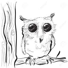 sketch clipart owl pencil and in color sketch clipart owl