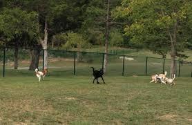 jim falk lexus wilshire groundbreaking for beverly hills community dog park canyon news