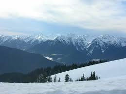 mountains olympic national park u s national park service