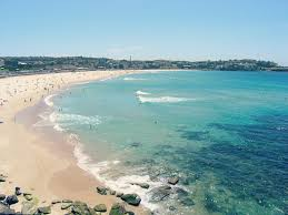 Pennsylvania beaches images Five iconic sydney beaches travelling assassin jpg