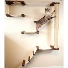 wall cat tree u2013 kreditevergleichen club
