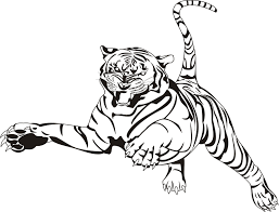 snow tiger coloring page adult coloring pages tiger acpra