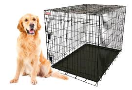 amazon com coleman 42 inch large heavy gauge foldable wire pet