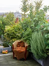 roof garden plants secret paris a tiny roof garden with an eiffel tower view