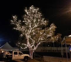 long branch tree lighting vegas event lights lighting service detail