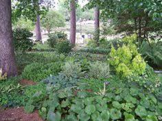 Landscaping Tyler Tx by Shreveport Historic Homes For Sale Azaleas In The Historic