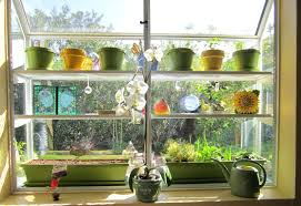 kitchen garden window ideas decoration greenhouse kitchen windows garden window ideas