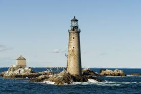 whaletrips new england best tips for whale watching in new england