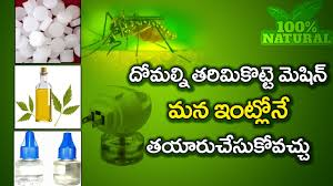 Mosquito Repellent For Home by How To Kill Mosquitos Home Remedy Lowcost 100 Amazing Natural