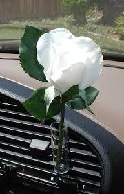 Beetle Flower Vase Car Flower Vase Clips To Any Car Air Vent Autovase Com