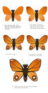 how to draw a butterfly drawing freelancer blog