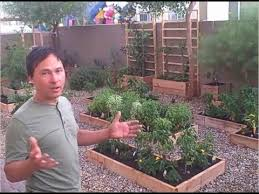 How To Plant A Vegetable Garden In Your Backyard by How To Grow A Vegetable Garden If You Rent Your Home Youtube