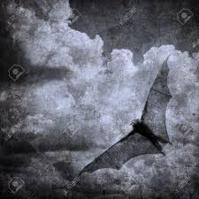 dark halloween background bat in the dark cloudy sky perfect halloween background stock