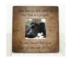 sympathy for loss of dog 10 best pet loss sympathy gift ideas