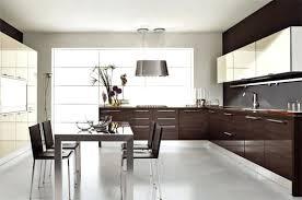 modern kitchen decor ideas modern kitchen decorating ideas photos neatnsweetfarms com