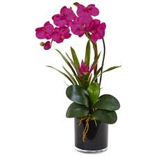 faux orchids orchids arrangements nearly