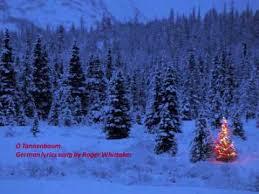 oh christmas tree o tannenbaum youtube