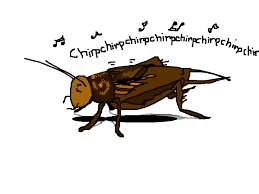 Crickets Chirping Meme - eharmony guy crickets chirping