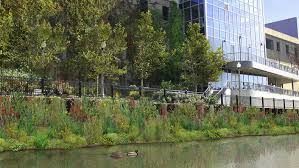 cheap native plants urbanrivers plans to install floating gardens in the chicago river