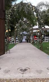 wedding arches cape town duo decadence cape town wedding live wedding for