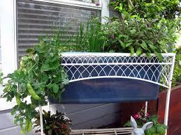 expert tips for vertical vegetable gardening