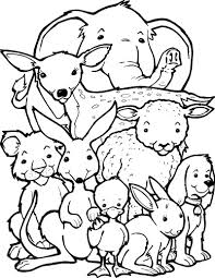 cute baby monkey coloring pages 1247 best kolorowanki images on pinterest coloring books